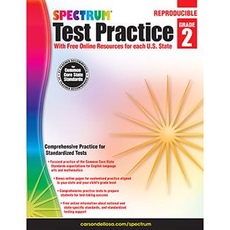 Picture of Test practice workbook gr 2