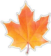 Photo leaf paper cut-outs
