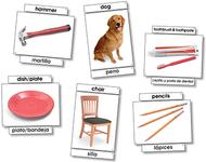 Basic vocabulary language cards