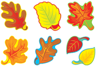 Fall leaves variety pk classic  accents