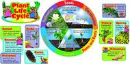 Plant life cycle mini bbs