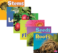 Plant parts book set of all 6