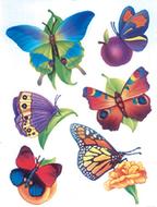 Window cling butterflies 12 x 17