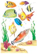 Window cling fish 12 x 17