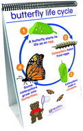 Flip charts all about animals  early childhood science readiness