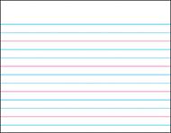 Wipe-off chart handwriting paper  22 x 28